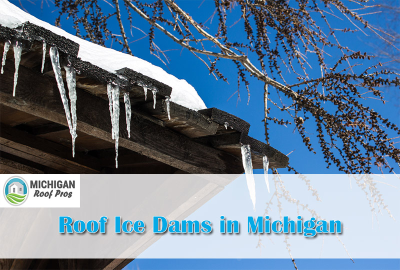 Roof Ice Dams in Michigan 2