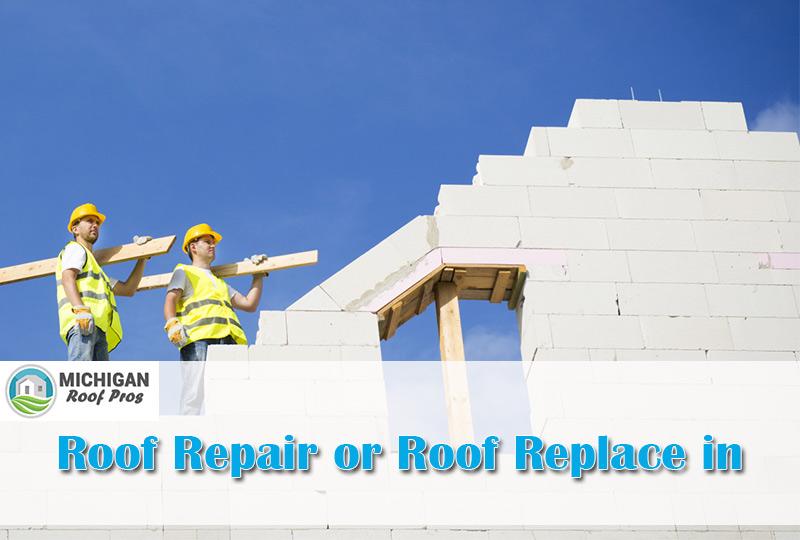 Roof Repair or Roof Replace in Michigan 2