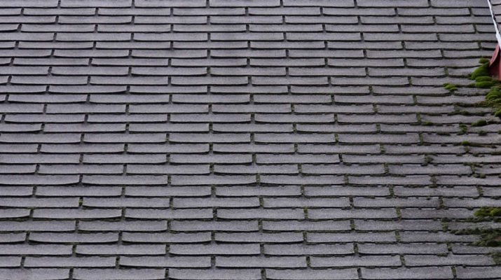 Why You May Need Roof Repair in Michigan