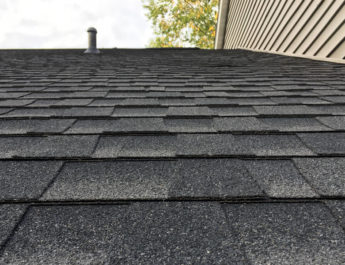 Architect Shingles in MI