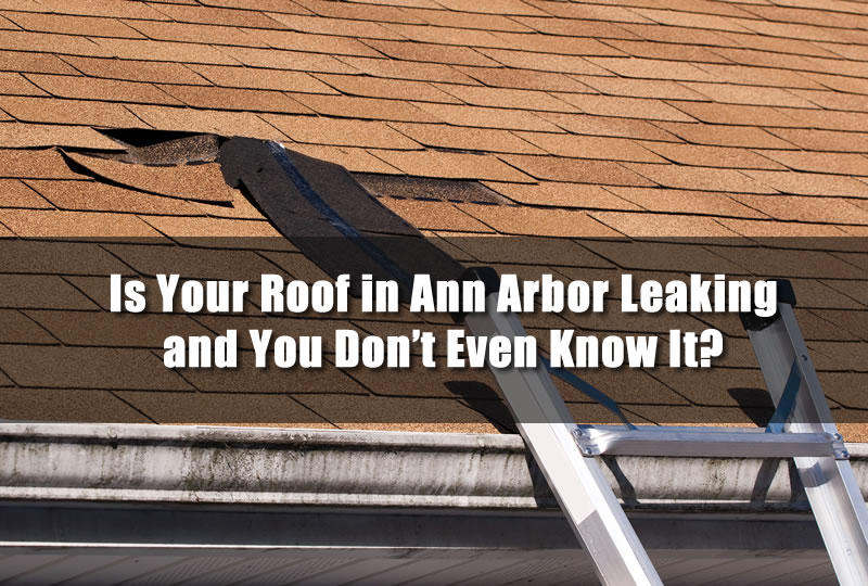Is Your Roof in Ann Arbor Leaking and You Don't Even Know It?